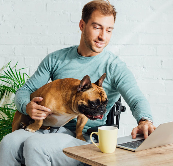 Disabled man holding french bulldog on knees and working on laptop at home